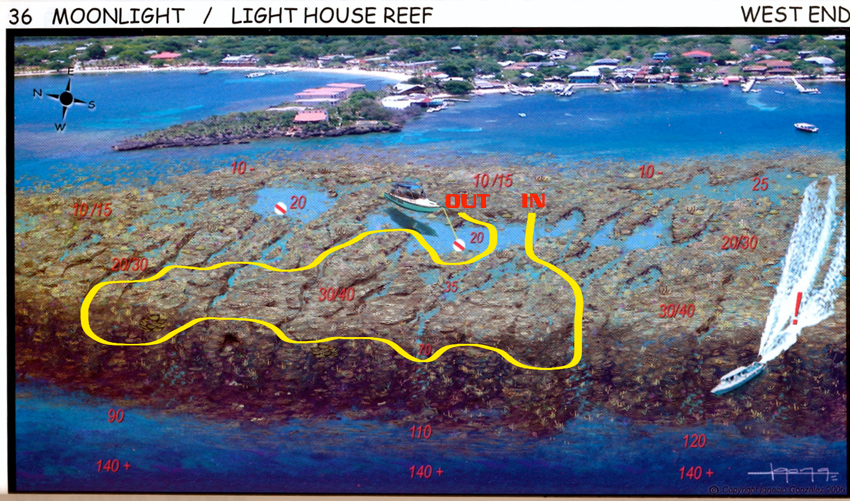 Dive sites henry morgan roatan tgi diving international - Roatan dive sites ...