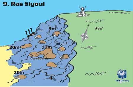 ras_siyoul