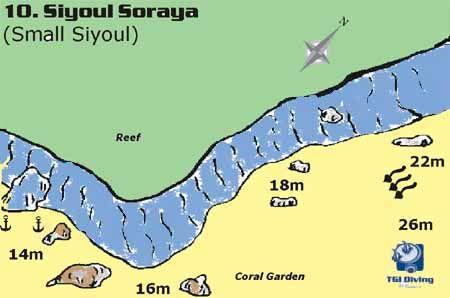 siyoul_soraya