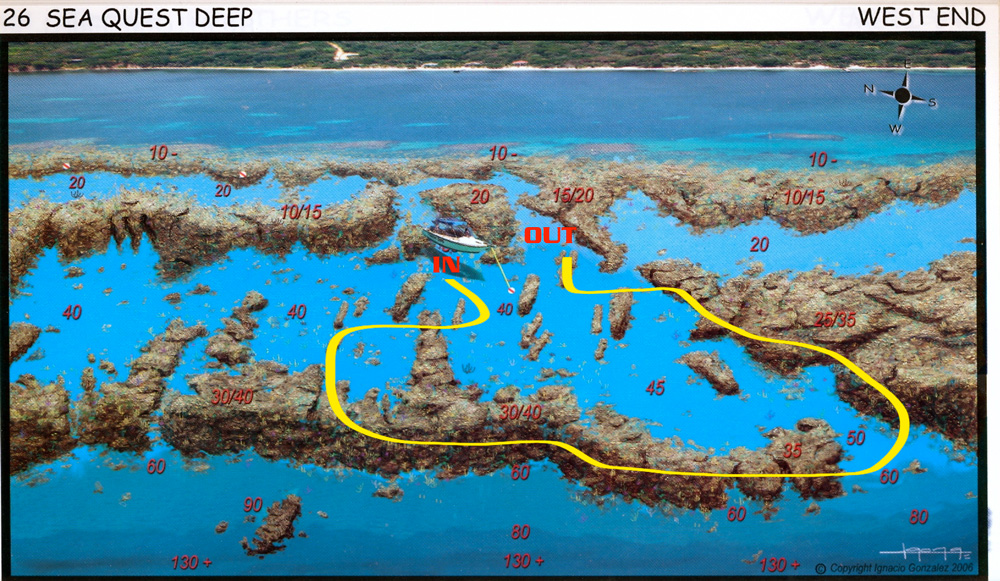 Dive Sites | Henry Morgan, Roatan | TGI Diving International