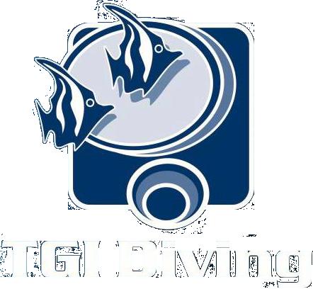 logo_tgi