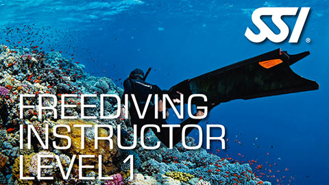freediving_instructor01