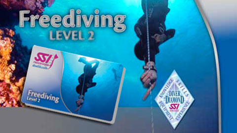 freediving_lv2