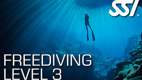 freediving_lv3