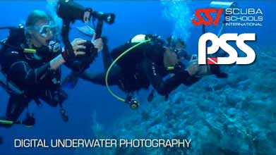 underwater_photography